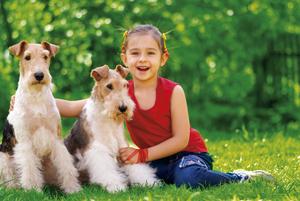 Credit foto:  BestPhotoStudio, 2012/Shutterstock.com