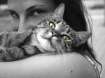 animals-617305_960_720