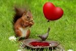 Valentine's Day în familie