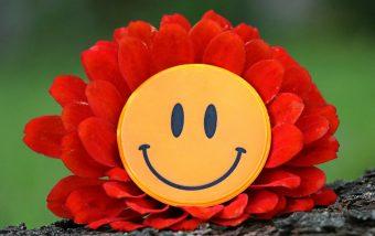 smile-1539196_1280