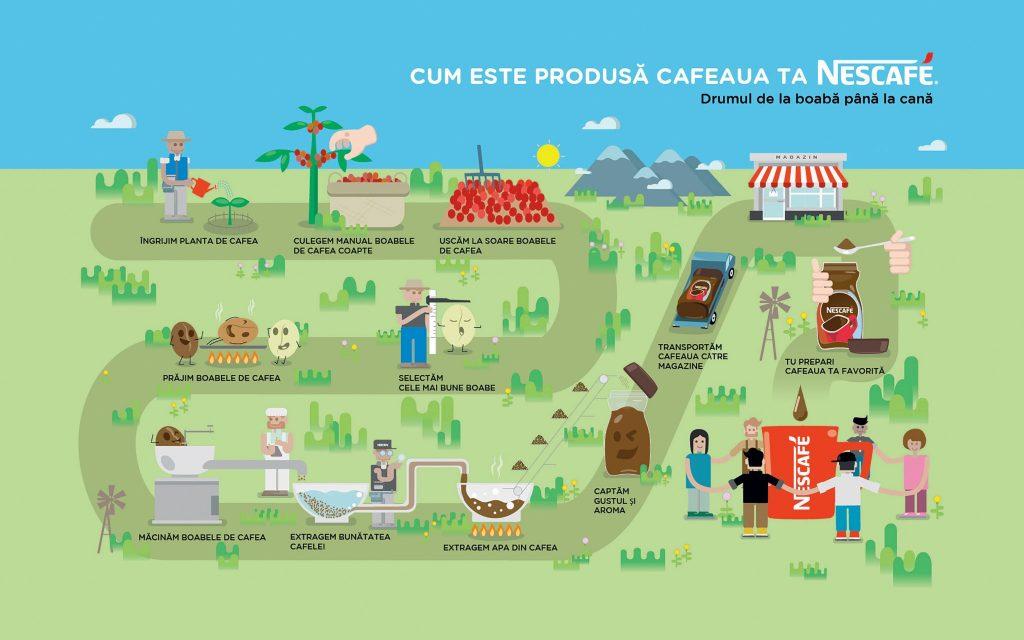 infografic_procesul-de-productie-al-cafelei