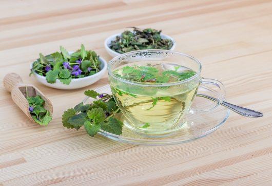 Plantele, aliat pentru detoxifiere