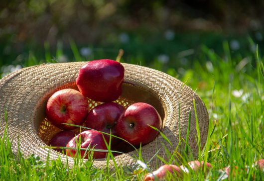 Frumoasă cu un măr pe zi