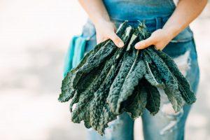 acid folic din frunze de kale